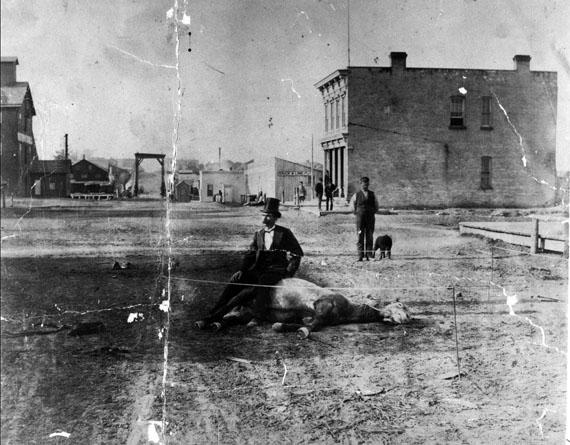 Man sitting on a dead horse in Sheboygan, WI