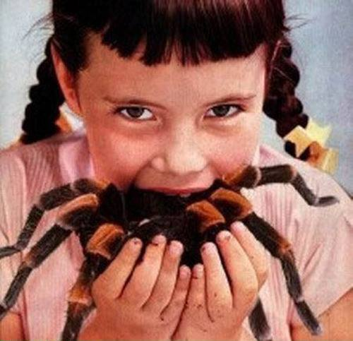 Girl eating tarantula