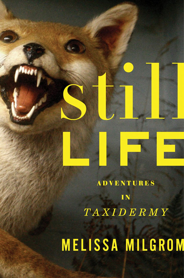 Still Life Adventures in Taxidermy book by Melissa Milgrom