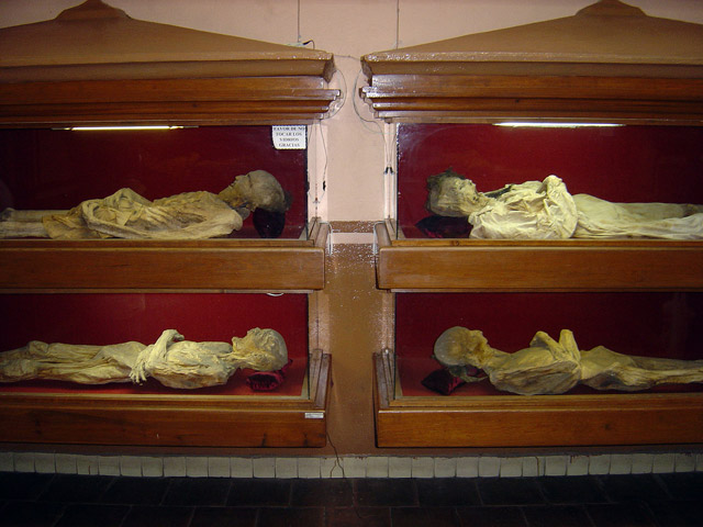 Mummified remains in glass coffins at the El Museo De Las Momias in Guanajuato, Mexico