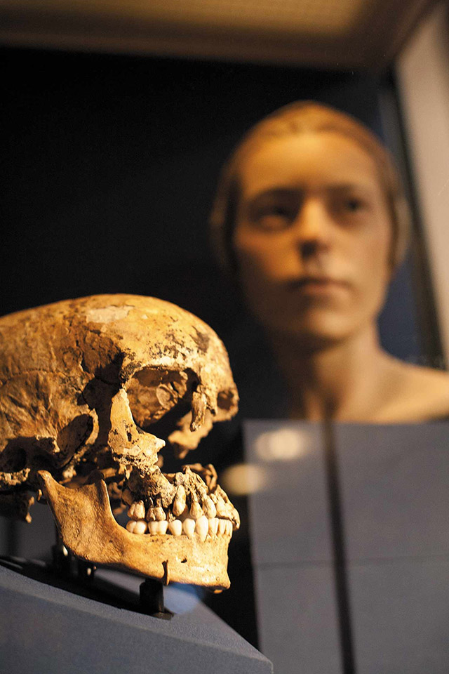 A skull found in Jamestown supports speculation of cannibalism
