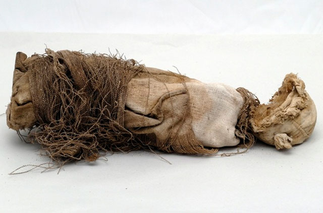 Mummified remains of a fetus discovered beneath the St. John the Evangelist church in Casentino, Italy