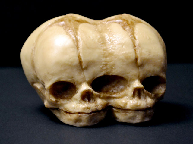 Chocolate conjoined twin fetus skulls by Conjurer's Kitchen