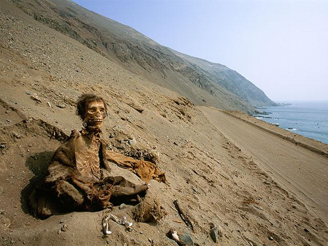 A Chinchorro mummy in the Atacama desert