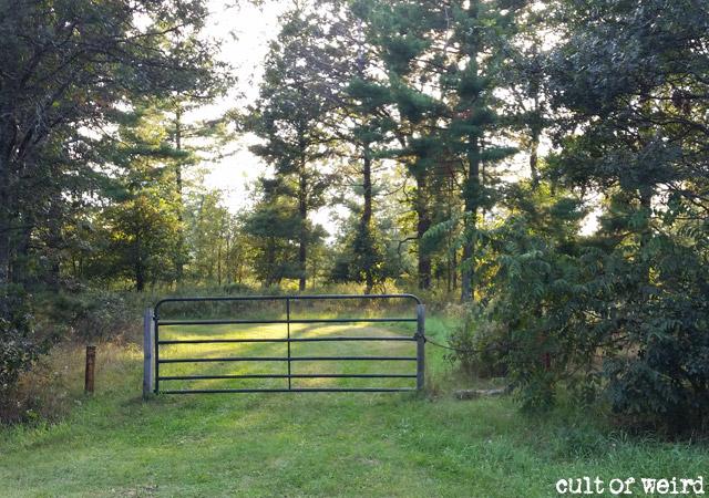 Ed Gein's farm, where his house of horrors once stood