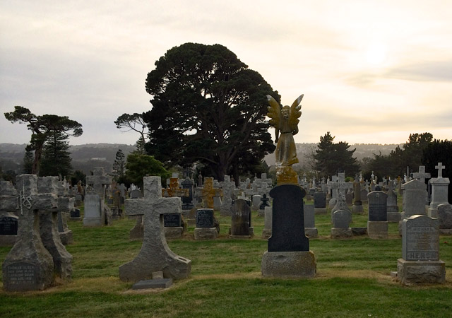 Cemetery in Colma, the City of the Silent