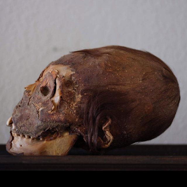 Peruvian elongated mummy skull