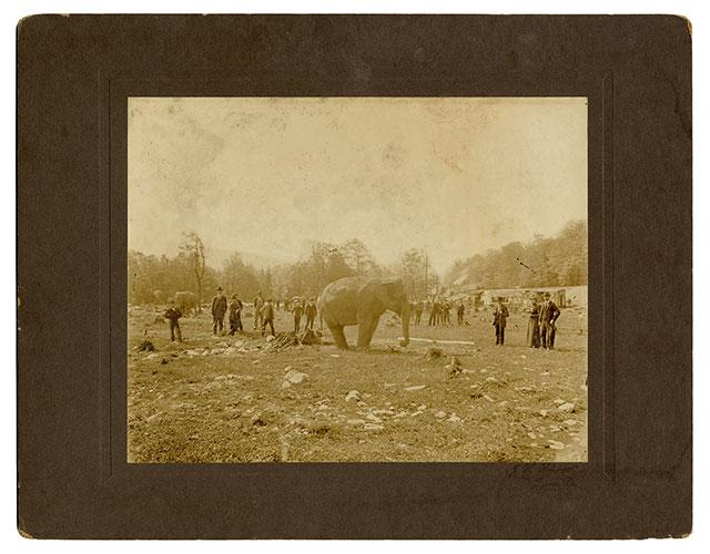 The Walter L. Main Circus train wreck in Tyrone, Penn., 1893