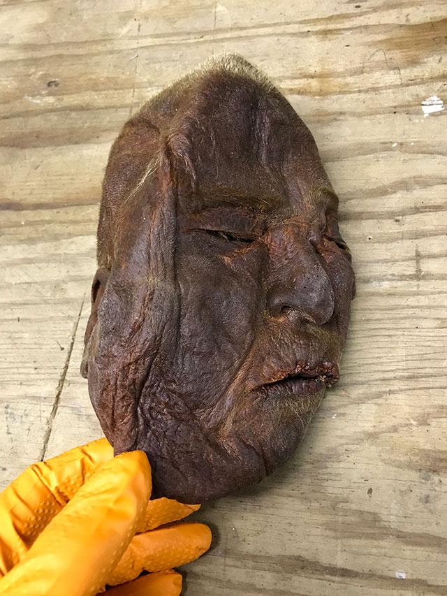 Oddities for sale: Human face specimen